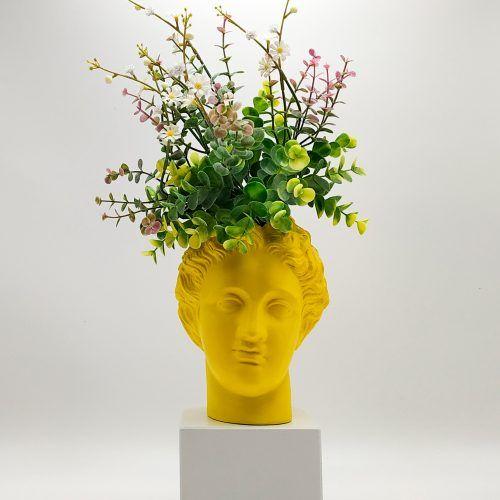 Afrodita florero (Ref: 147)